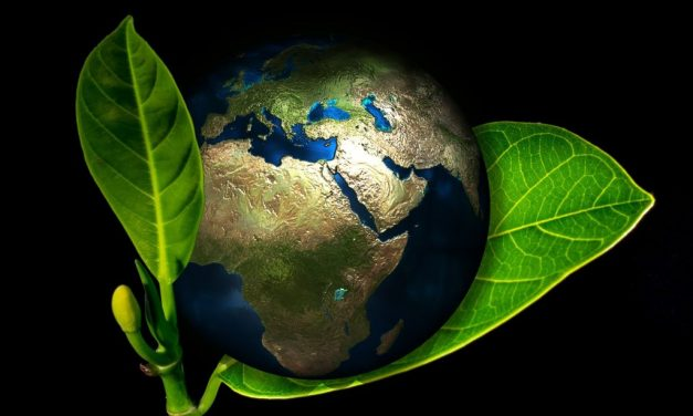 """CfP: International symposium """"(Re)thinking Earth: From Representations of Nature to Climate Change Fiction"""" April 22-23, 2020 @National Library of Portugal, Lisbon (POR). Deadline: March 15, 2020"""
