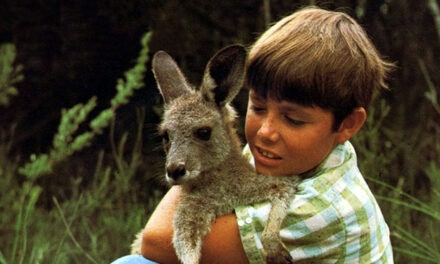 NON-HUMAN PERFORMANCE, MISE-EN-SCENE AND THE TRANSNATIONAL: SKIPPY THE BUSH KANGAROO by Jonathan Bignell
